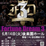fortune_dream3_poster